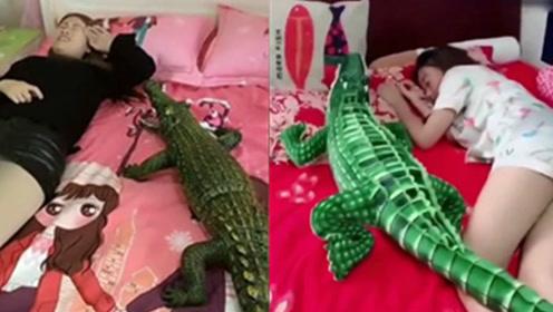 最近很火的电动鳄鱼玩具,520给女友一个惊喜!