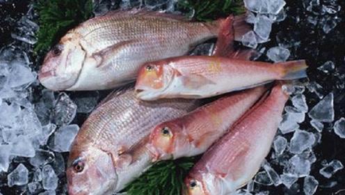 孕妈妈吃鱼好处多多,但吃鱼也有讲究,吃对鱼有益于胎宝宝发育