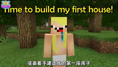 我的世界动画 菜鸟PK专家 造房子