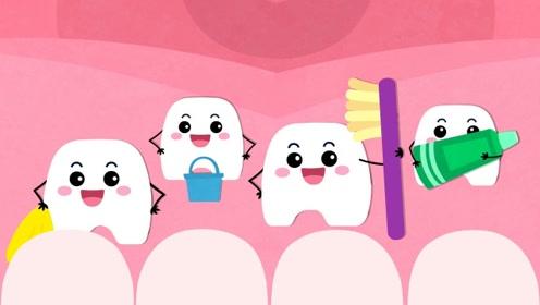 认知新奇世界—健康大白牙,帮宝宝理解认识牙齿名字及作用