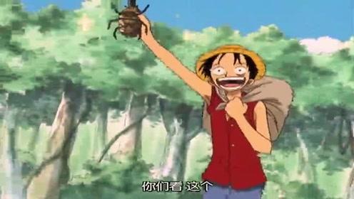 海贼王:路飞迟到大家还担心会不会出事了,没想到只是去抓虫子了