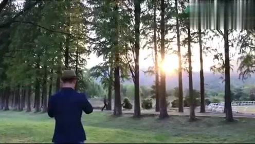 手机教学如何拍摄逆光剪影人与狗的夕阳