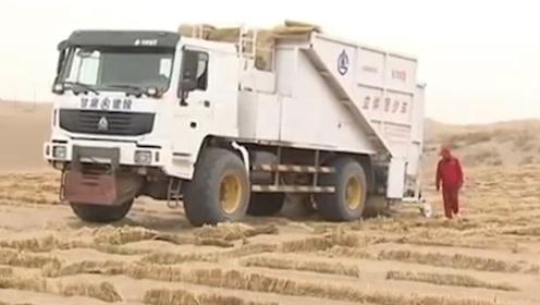 中国发明沙漠神器,沙漠有救了,每天固沙50亩,多国争相抢购