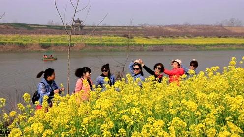 踏春黄桥,赏万亩桃花