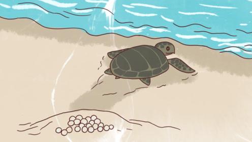 【饭制】《水深火热的星球》里一生不曾相见的母子,生存技能靠天赋