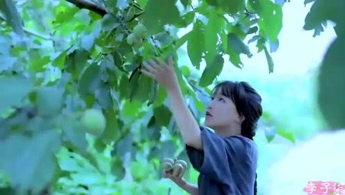 美食李子柒:诗一般的田园生活,严选食材的天然风味,传承独家酱料!