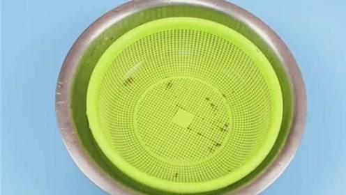 厨房的菜篮子脏了?教你个诀窍,只需泡一泡,5分钟干净如新