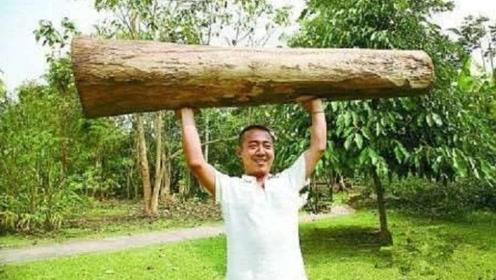 世界上最轻的木材,在国外用来制造飞机,我国却用来做保温瓶塞!