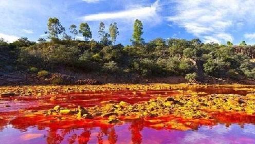 全球唯一的红酒河,但河水不能喝不能碰,方圆数百公里无人居住