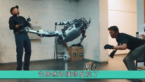 """隐忍多年,波士顿智能机器人终于""""还手"""",网友:看到了未来"""