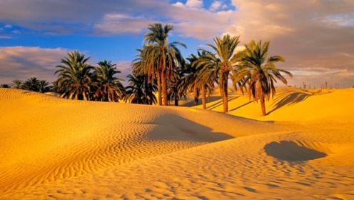 沙漠里迷了路怎么办?千万别走直线,越走越迷路