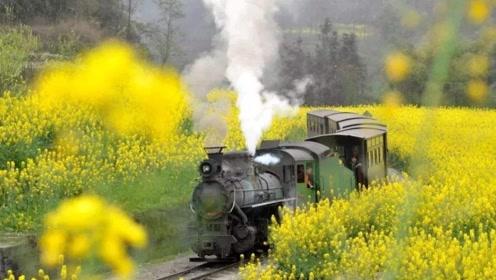 我国票价最贵的火车,19公里却要收100块钱,游客说非常值得