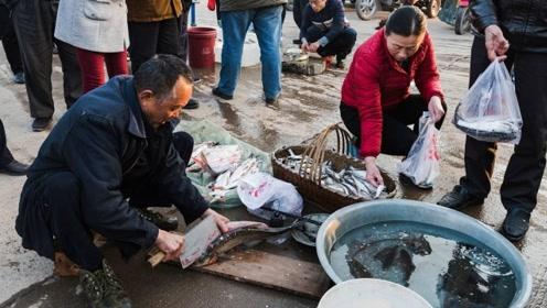 为什么买鱼要求自己回家宰,鱼贩就不卖了?朋友分析说估计有猫腻