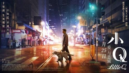 """电影《小Q》""""我愿意与导盲犬同行"""""""