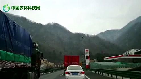 车拍西汉高速秦岭段,别只顾着看风景,安全驾驶最重要