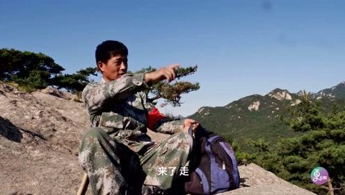 从黑发到白头:山东护林员33载守护万亩青山,每天巡山10公里