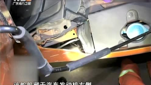 剧毒银环蛇钻进车内 可把车主吓得不轻!
