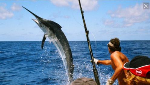 普通人忽略的三样东西,用它钓鲤鱼,一条接一条的上鱼,真心好用