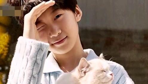 张亮低调为儿子宠物猫治病 一家人被赞超有爱