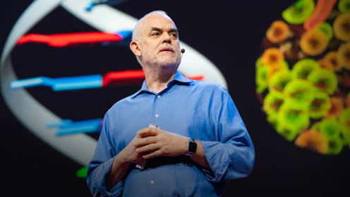 TED:他打破大自然造物的基本规则,创造出新的生物体
