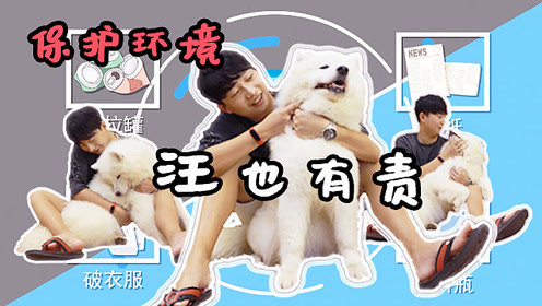 萨摩耶趁主人不在疯狂拆家,最后被严厉教育:垃圾分类狗狗有责!