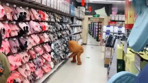 网红熊逛超市试东西,笑开套路路过小姐姐,活该你单身!