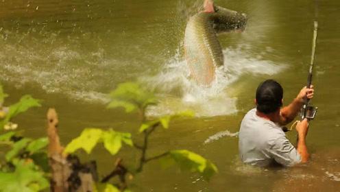 野外河中钓罕见的大鱼,简直是拿命在搏斗