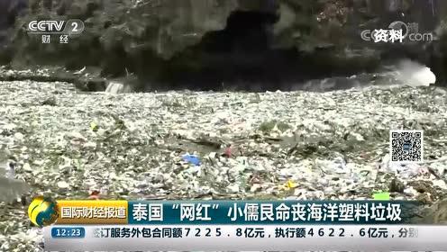 """泰国""""网红""""小儒艮命丧海洋垃圾 肠道里发现无数细小塑料碎片视频"""