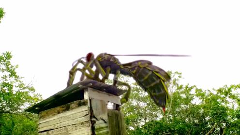 女孩被巨型蜜蜂叼走,抓回山洞慢慢享用,人类毫无还手之力!