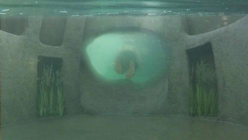 买不起地上的房子,小伙在水下挖出秘密豪宅,一起来见识一下!
