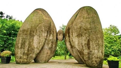 云南大山两块巨石,造型奇特如臀部,是天然形成还是人为导致?