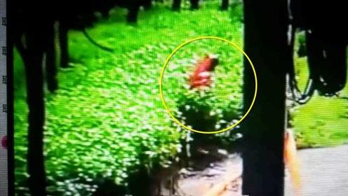 监控拍下惊险一幕!女子坠入施工深水坑,民警飞奔救人