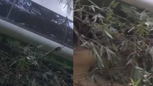 江苏南京旅行团老挝发生严重车祸,央视:约5人遇难14人失踪