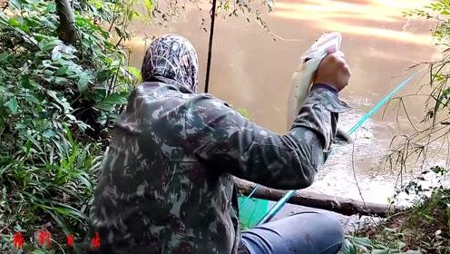 钓上一条鱼,丢了一把竿,鱼还放了……
