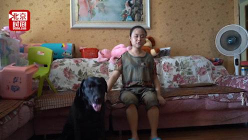 厉害了!重庆一只导盲犬能听懂重庆话 主人:它是我的亲人