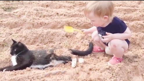 萌娃实力坑猫,把猫咪埋沙子堆里,网友:友谊的小船说翻就翻!