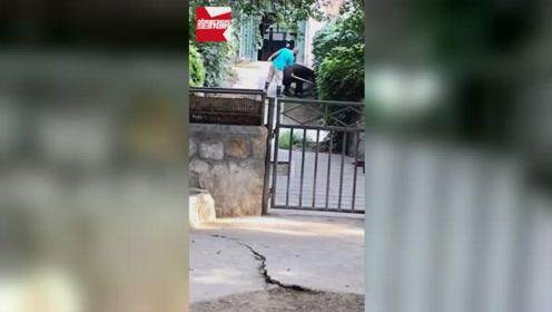 北京动物园饲养员不停抽打貘,园方:过激行为将加强管理