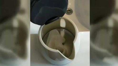 往五星级酒店水壶扔卫生巾的女子,被监控拍到了