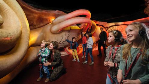 """全球唯一""""身休博物馆"""",进入女巨人内脏,你想了解哪个器官?"""