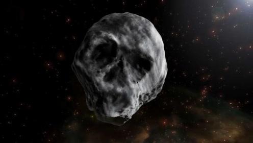 如果人类消失的话,那么地球由谁来接管呢?看科学家怎么说!