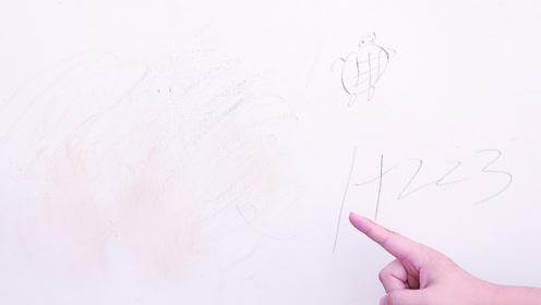白墙脏了不用重新刷,墙壁上抹一点,轻轻一擦就干净,省力又省事