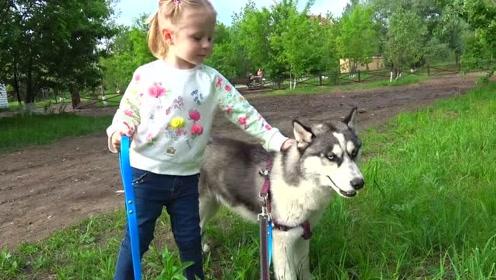 萌娃:宝宝可喜欢狗狗了,好想有一只属于自己的宠物呀!