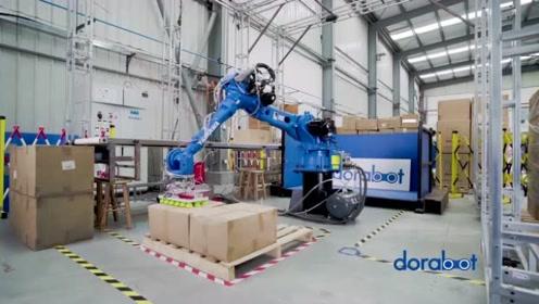 AI+机械臂搞定上货、分拣、装载仓储全流程