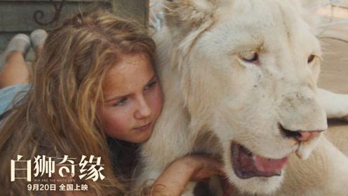 """电影《白狮奇缘》曝""""与狮共舞""""特辑,剧组全员与狮同行三年"""