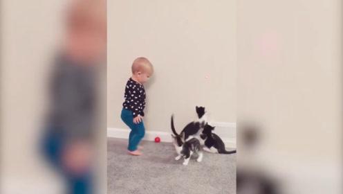 萌宝,你是在跟猫咪玩游戏吗?赶紧好有趣啊!