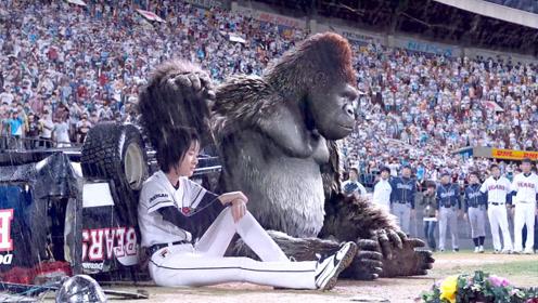 女孩为了还债,让猩猩去打职业棒球赛,结果成了超级明星!
