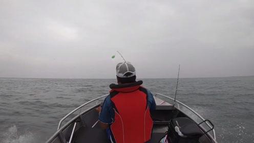 有钱人都是这样钓鱼的吗,开着快艇,追鱼群