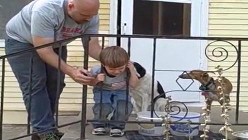 男孩儿被卡在栏杆上,父亲死活拔不下来,后面狗狗的表情亮了!