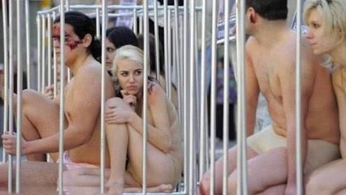 这份工作年薪千万,仅需被放在笼子里观赏,许多人不愿意干?