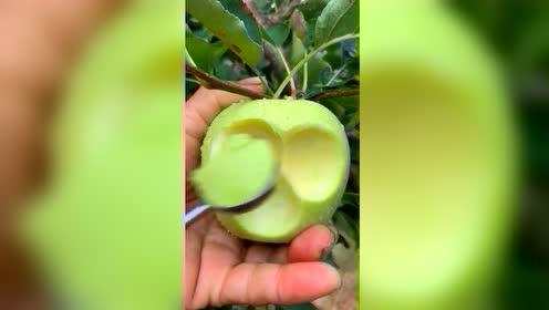 今年还没有吃到青苹果的朋友要赶快啦 过段时间就没有咯